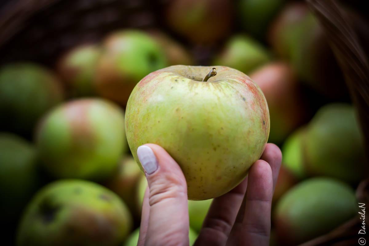 terci de ovaz cu mere